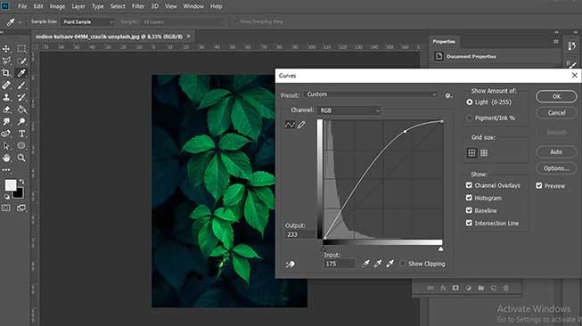 Tips Cara Edit Foto di Photoshop , Layaknya Fotografer Pro!